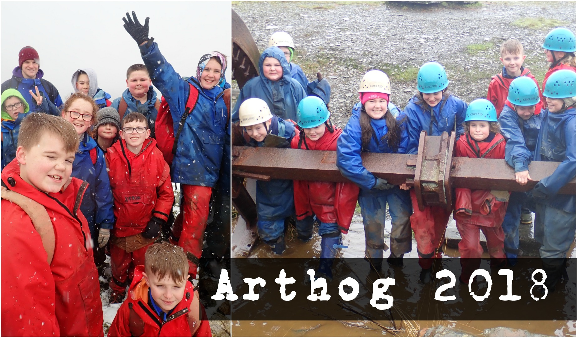 ARTHOG2018COLLAGE.jpg